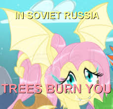 Mlp Fluttershy Meme - have some s3 fluttershy my little pony friendship is magic