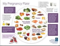 best 25 pregnancy diet plans ideas on pinterest first trimester