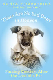 the loss of a pet there are no sad dogs in heaven finding comfort after the loss of