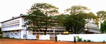 Bsc Interior Design Colleges In Kerala Nirmala College Of Arts And Science Chalakkudy Thrissur Courses