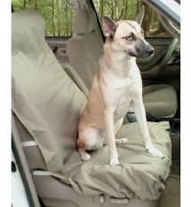 protection siege auto chien protection siege auto pour chien