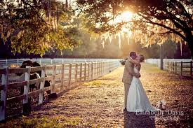 wedding venues in ta fl home the lange farm