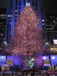 98 best rockefeller center christmas trees images on pinterest