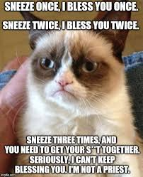 Sneeze Meme - grumpy cat meme imgflip