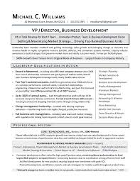 sample resume executive manager vp business development sample resume executive resume writing