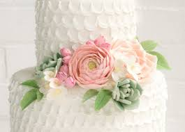 Wilton Cake Decorating Classes Nyc Flower Search Results Erica O U0027brien Cake Design Cake Blog