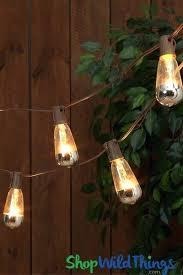 edison string lights edison string lights outdoor metallic silver dipped bulbs indoor