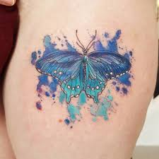 watercolor butterfly design segerios com segerios com