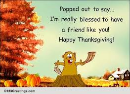 happy thanksgiving friend free friends ecards greeting cards