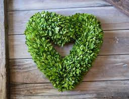 preserved boxwood wreath preserved boxwood wreath heart 16 mills floral company