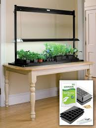 t5 fluorescent grow lights t5 fluorescent grow lights and tabletop garden starter kit