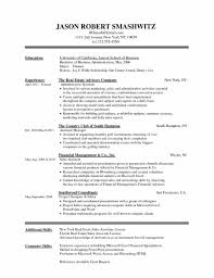 Word 2007 Resume Template In Word Resume Template Business Reference Simple Job Resume
