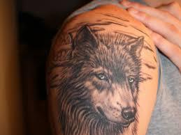 26 fierce wolf for 2013