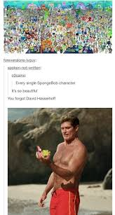 David Hasselhoff Meme - you can t forget david hasellhoff clean humor pinterest forget