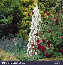wooden garden obelisk stock photo royalty free image 69097752