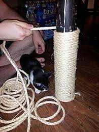 how to build a cat tree around a basement support pole cat trees