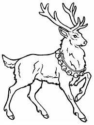 modest kindergarten coloring pages colori 2473 unknown