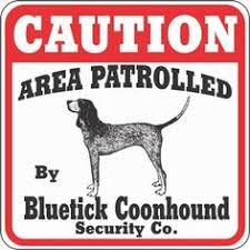 bluetick coonhound decals coon hunting hunting pinterest hunting dogs redbone