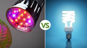 what is the best lighting for growing indoor grow lights vs regular lights the best lighting for your needs