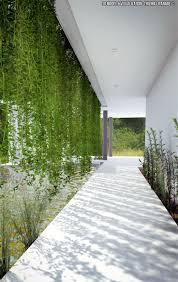 8 best plants for garden images on pinterest plants for garden