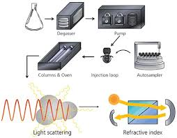 multi angle light scattering static light scattering for gel permeation chromatography gpc