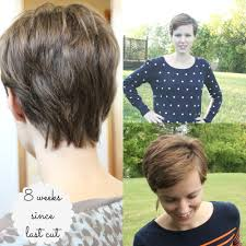 how long for hair to grow out of inverted bob growing out a pixie cut part 1 our wood home