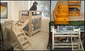 Plans To Build A Bunk Bed With Stairs by How To Build A Bunk Bed For Your Pets Diy Projects For Everyone