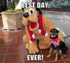 Best Day Ever Meme - best day ever know your meme