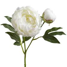 faux peonies faux white peony buds spray pier 1 imports