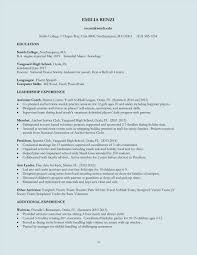 Best Resume Format Electronics Engineers by Guide Best Best Looking Resume Format Electronics Engineering