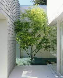 images about courtyard designs the smalls plus small for house 136 best garden design ideas images on architecture