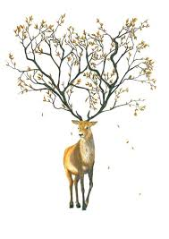 antler tree pencil and in color antler tree