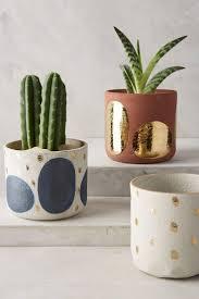 succulent planters for sale 25 unique painted plant pots ideas on pinterest painted flower