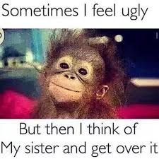 Sister Memes Funny - tag your ugly sister humor pinterest funny pictures