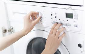 Does Dryer Kill Bed Bugs How To Check For Bed Bugs And Kill Them On The Spot