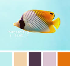 color combinations with orange turquoise and orange interior design color palettes