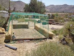 black gold from desert dry wash to organic vegetable garden in one