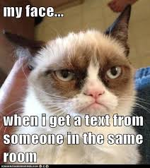 Frown Cat Meme - my face when lolcats lol cat memes funny cats funny cat