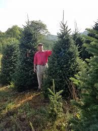 christmas cartnerhristmas tree farm august orange and blue tags2