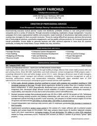 resume writing companies mughen markcastro co military resume writing companies how to of professional services resume resume writing companies