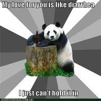 Pick Up Line Panda Meme - pickup line panda image gallery know your meme