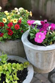 cement plant pots tutorial ehow
