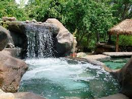 Natural Backyard Pools by Natural Design Swimming Pool And Landscape Design Photos And