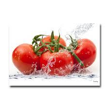 tableau pour cuisine tableau plexiglass cuisine tomates