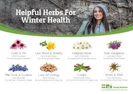 helpful herbs for winter health hri herbal medicine