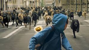 film rise up dogs rise up in trailer for hungarian film white god nerdist