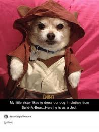 Build A Bear Meme - my little sister likes to dress our dog in clothes from build a