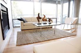Home Goods Home Decor Coffee Tables Jute Rugs With Large Windows And White Sofa For