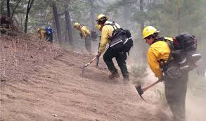 Wildfire Suppression Equipment by Wildfires You U0027ve Got Questions We U0027ve Got Answers Bay Curious