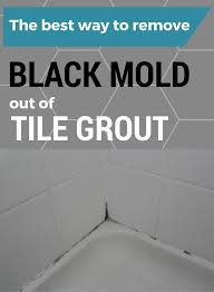 What Causes Mould In Bathrooms Best 25 Toxic Black Mold Ideas On Pinterest What Causes Mold